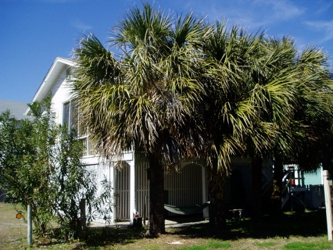 My Beach House, Original 1930s beach cottage, beachside of Butler avenue, Pets OK, sleeps 10, Includes My Little Beach House within fenced backyard, Free WiFi, Pets ok